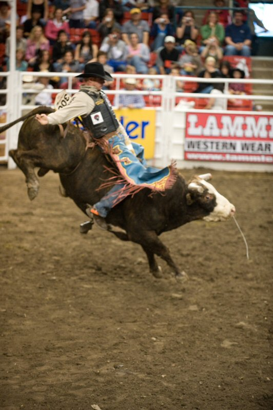 how to buy calgary stampede parade tickets