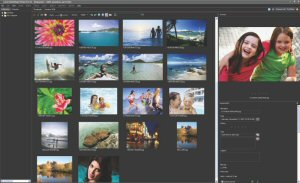 The Corel PaintShop Photo Pro X3 Ultimate Organizer lets users rate, tag, locate and touch up images