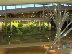 The three living walls in the Stantec designed terminal of Edmonton International Airport.
