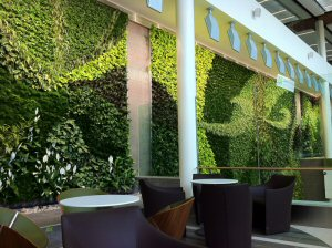 Passengers will breathe fresh air produced by the more than 8000 individual plants.