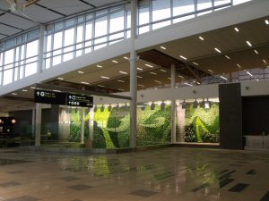 These are the first major Living Walls to be built inside a North American airport terminal.