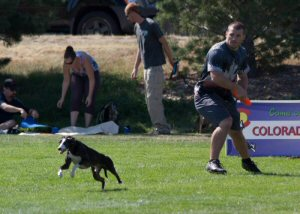 Rob McLeod throwing to Davy Whippet in the first heat of the 2012 Denver Quadruped.  Rob and Davy would go on to break their World Record, win the Quad and win the National Quad series