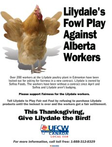 Locked out workers at the Lilydale poultry plant in Edmonton have launched a province-wide public awareness campaign, asking Lilydale to play Fair, not Foul in a leaflet being distributed across Alberta.