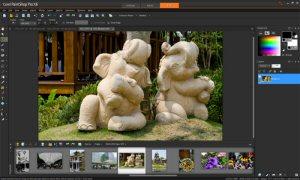 Corel® PaintShop® Pro X6 Ultimate Auto Selection Tool Screen Shot