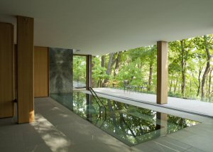 The Integral House's indoor pool with fully retractable wall opening onto Toronto's Rosedale - Moore Park Ravine System.  Photo by Undine Prohl