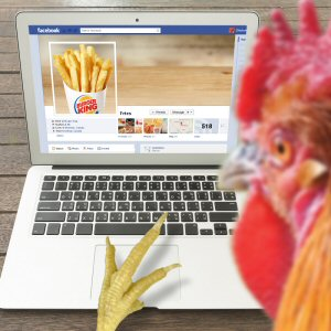 The Chicken Fries launch is supported by a cheeky national campaign that chronicles the budding affair between a love-hungry chicken and the world famous BURGER KING(R) French fries.