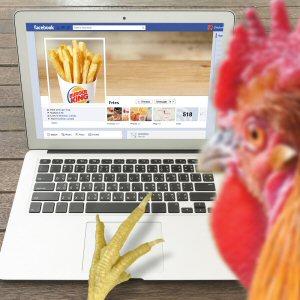 Les Frites de poulet seront soutenues par une campagne audacieuse à l'échelle nationale; un poulet et les célèbres frites de BURGER KING® sont au coeur de cette histoire d'amour.