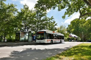 PRIMOVE e-buses in Mannheim, Germany, are charged inductively at selected bus stops. Copyright: Nikola Haubner