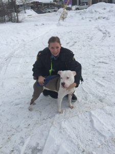Kenna and an Ontario SPCA Animal Control Officer on day of transfer