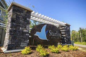 Starling at Big Lake Entry
