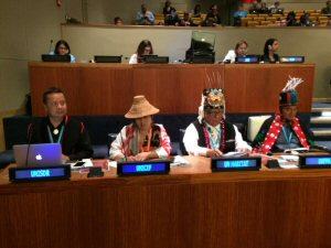 Canadian Indigenous Peoples Take LNG Protest to the UN