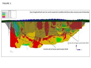 Figure 1 - Vue longitudinal vers le nord-ouest du modèle de blocs des ressources minérales
