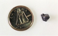 Figure 1 - Small bead produced during test #24