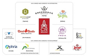 A graphical representation of CR Brands' portfolio of owned and licensed brands, together with its distribution channels.