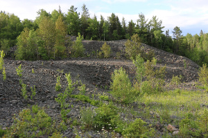 Image 1. Muckpile material at Keeley mine.