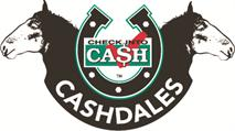 Check Into Cash, Inc.