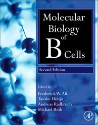 Michael Reth, molecular biology, B cells
