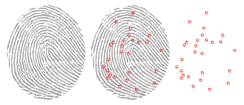 morpho places first in nist 2014 minex fingerprint benchmark