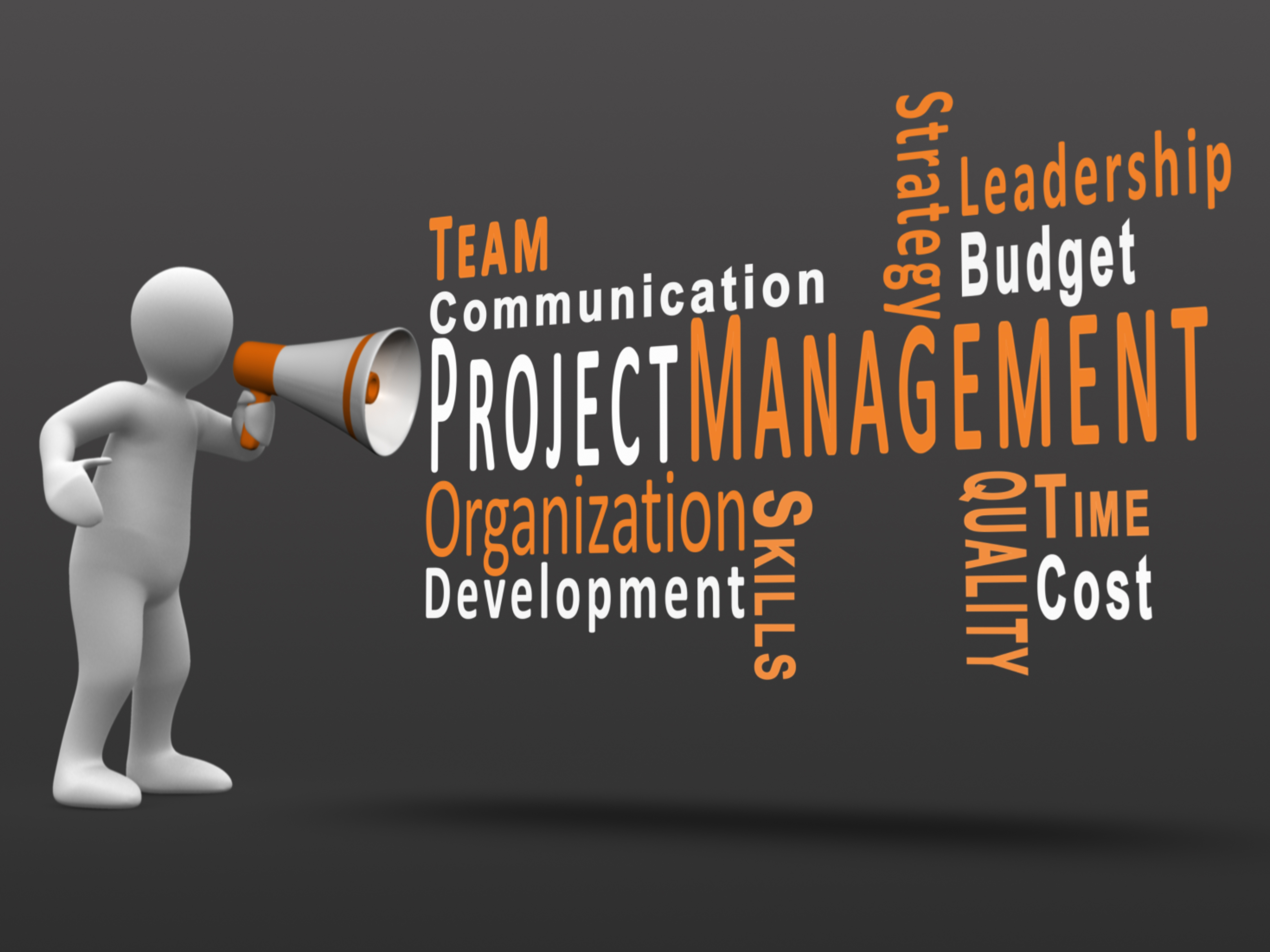 project management video Looking for the best project management software here's a list of 46 best project management tools find the right one now scoro  have video conversations.