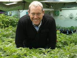 Tim Cullen, CEO, Colorado Harvest Company