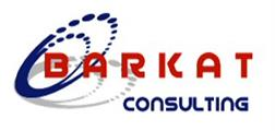 Barkat Consulting, Inc.