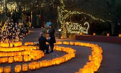 Phoenix Christmas Marriage Proposal with Shane Co. Engagement Ring