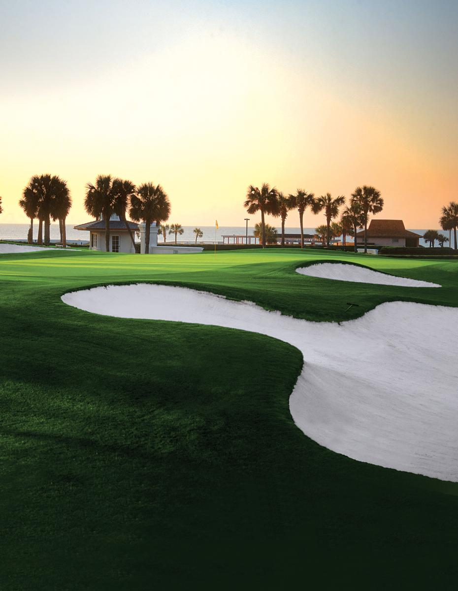 tee off the season with porter 39 s flights to myrtle beach. Black Bedroom Furniture Sets. Home Design Ideas