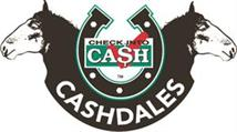 Check Into Cash Cashdales