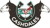 Check Into Cash Cashdales