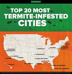 Top 20 Most Termite-Infested Cities in the United States