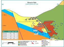 Figure 6:  Victoria Vein Cross Section