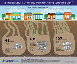 Merchant Risk Monitoring Infographic