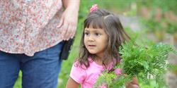 Photo Credit: Seeds of Native Health Initiative