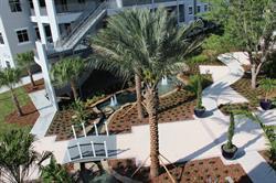 ASI Courtyard