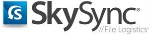 SkySkync, data migration, synchronization, content management, ECM, cloud storage