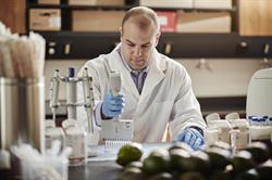 Professor Paul Spagnuolo from the University of Waterloo has discovered a lipid in avocados that combats acute myeloid leukemia (AML) by targeting the root of the disease - leukemia stem cells. Professor Spagnuolo is among only a handful of researchers worldwide, applying the pharmaceutical industry's rigorous drug discovery research processes to food-derived compounds, called nutraceuticals.