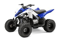 Yamaha Raptor, Raptor 90, Youth ATV, ATV, Raptor ATV