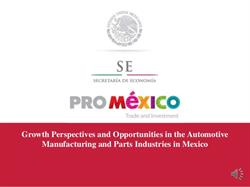 Available Investment Opportunities in the Mexican  Auto Industry