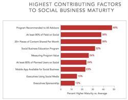 Contributing Factors to Social Business Maturity