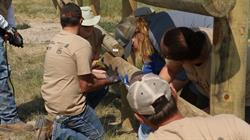 Tread Lightly!, Noble Energy, USFS, Forest Service, habitat, raptor, restoration, volunteer