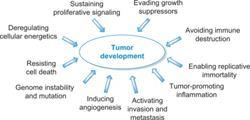 anitcancer drugs, medicinal chemistry, Elsevier
