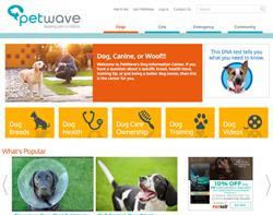 Petwave Responsive Design and Development