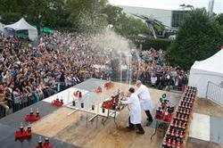 World Maker Faire New York 2015-Coke Zero & Mentos Fountains