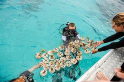 Rustic Pathways Fiji Marine Service and Adventure program