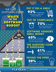 Flexera Software State of the Software Estate Report