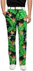 Bora Bora Men's Pant