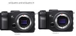 Sigma sd Quattro and sd Quattro H Mirrorless