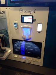 BrainGrid display