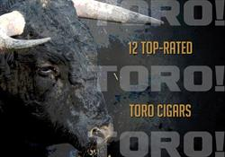 12 Top-Rated Toro Cigars