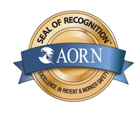 aorn 2018 guidelines for perioperative practice